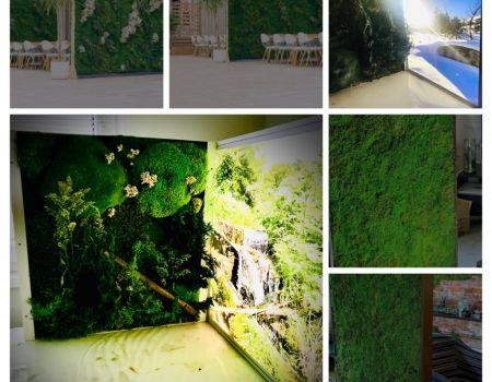 Machové paravány do interiéru v gastro priestoroch, reštauráciách, hoteloch a kanceláriách.